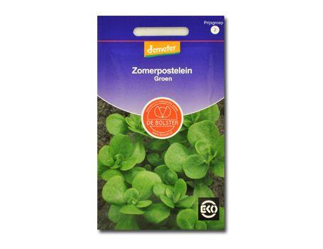 Biologische groenten Zomerpostelein