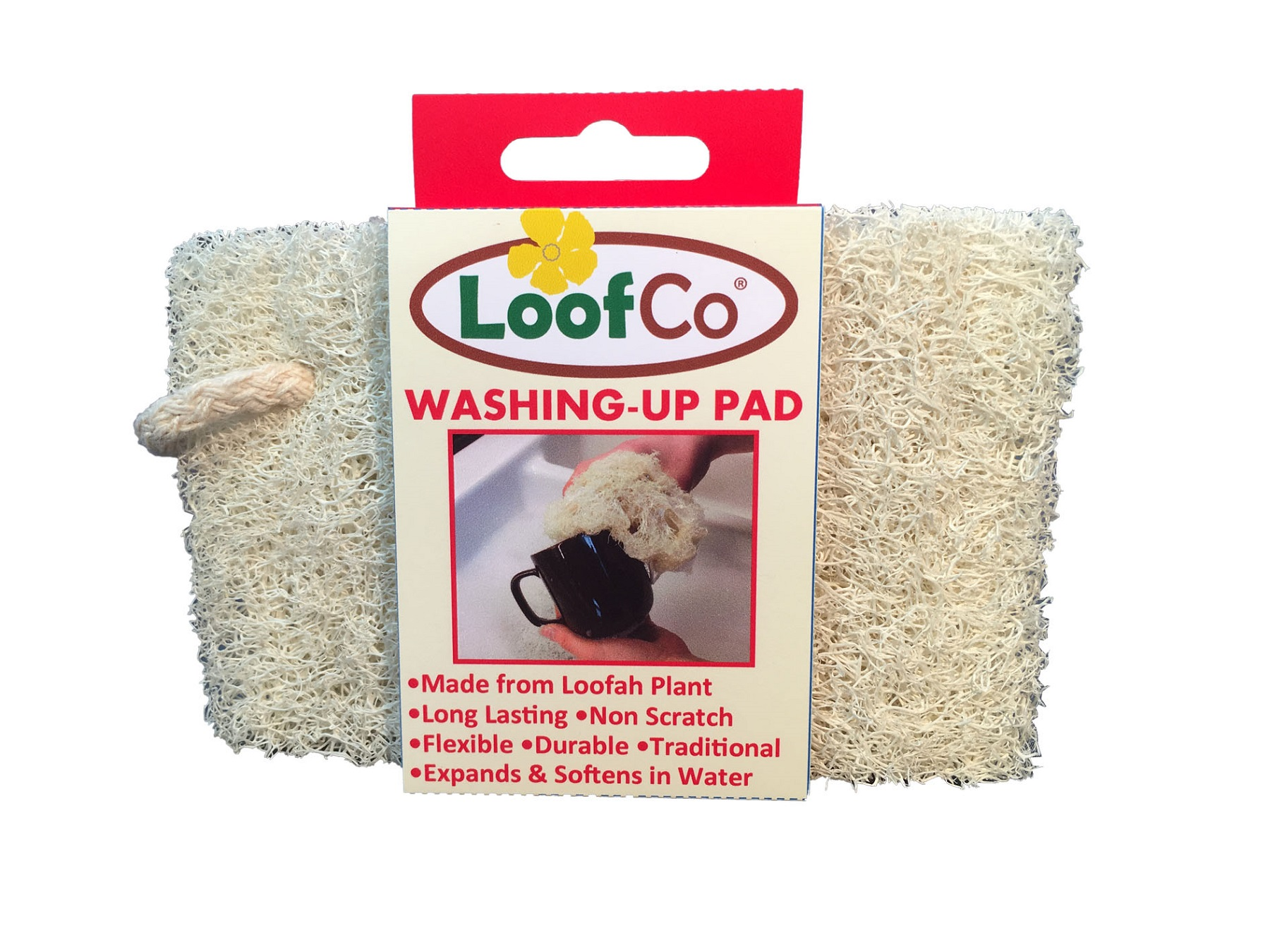 Afwas spons Loofco