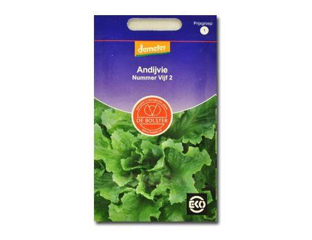 Biologische groenten Andijvie