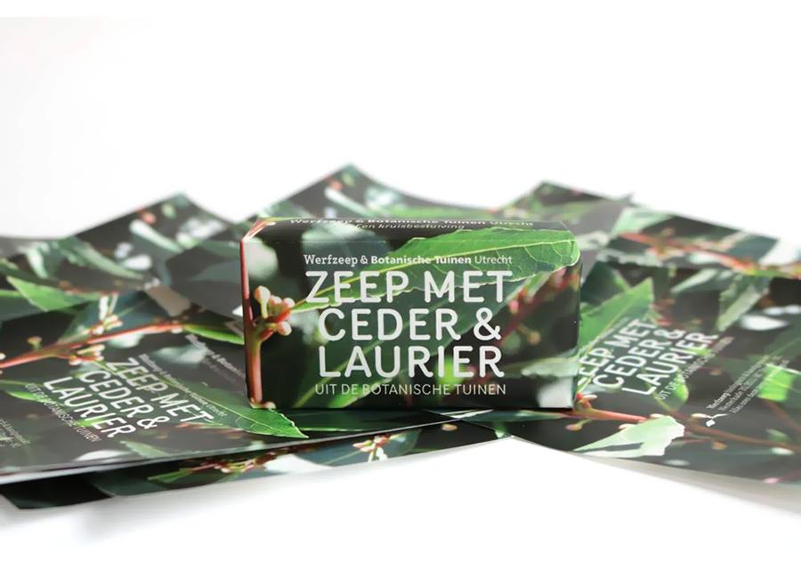 Werfzeep - Botanische tuinen - Ceder & Laurier