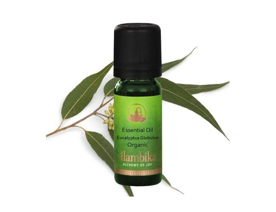 Aromatische olie - Eucalyptus - 10 ml
