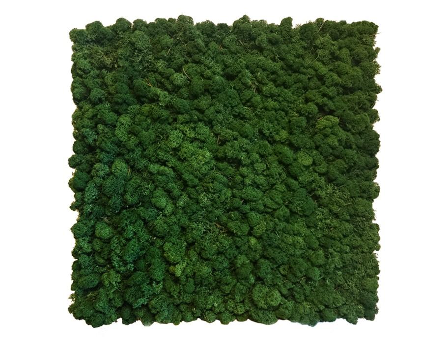 greenwall-rendiermos-akoestisch-paneel