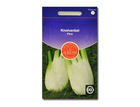 Biologische groenten Knolvenkel