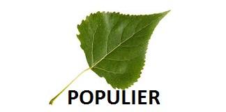 Populier logo