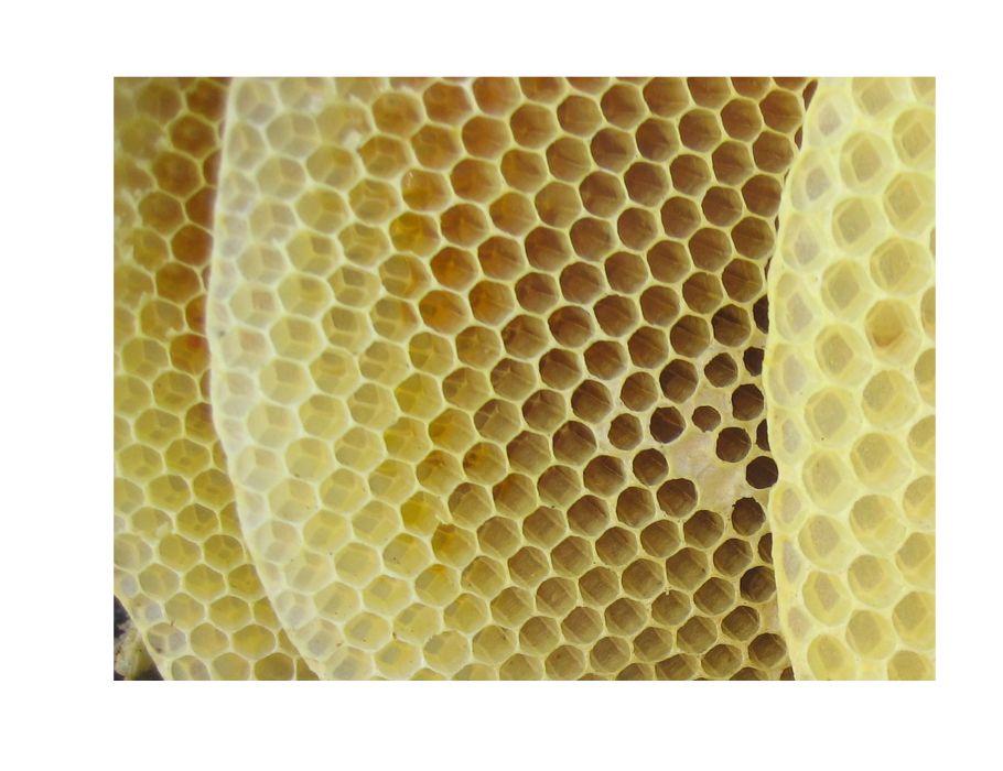 Bijenwasdoeken Reparatie set