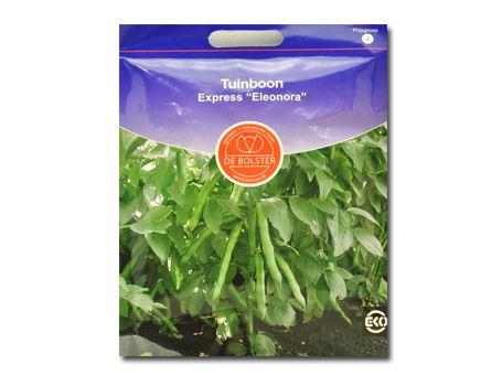 Biologische groenten Tuinboon