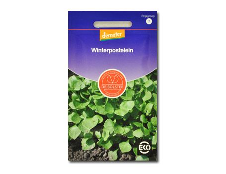 Biologische groenten Winterpostelein