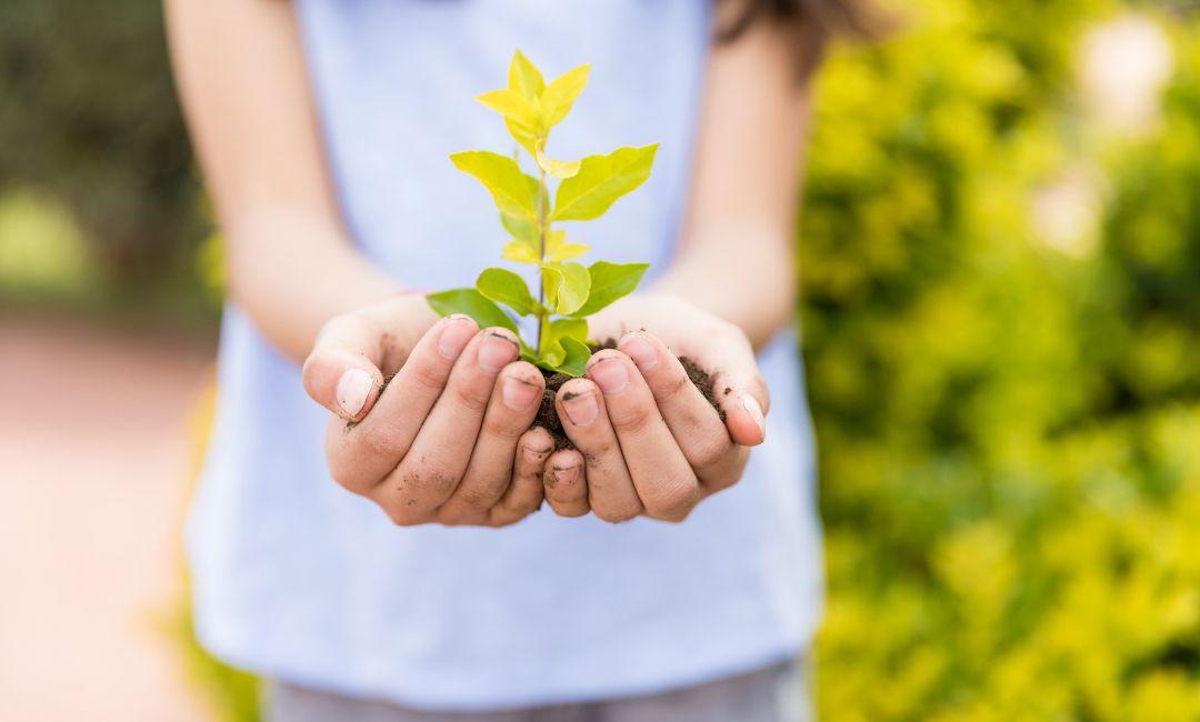 Wie man Kinder für das Thema Nachhaltigkeit begeistern kann
