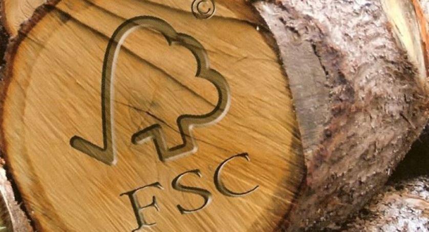 Bijna 60% van het hout op de Belgische markt gecertificeerd