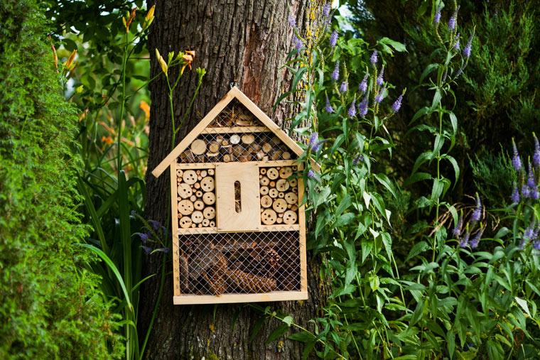 """Insektenhotels – Für Balkon, Terrasse und Kleingarten"""""""