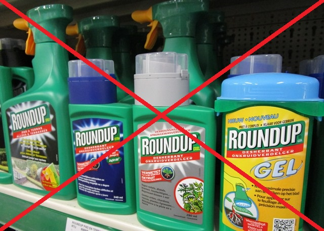 Deze voedingsmiddelen zijn bijzonder zwaar vervuild met glyfosaat