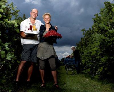 Zelf fruit plukken in Amsterdam ? Het kan !