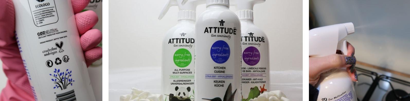 Attitude - Reiniging